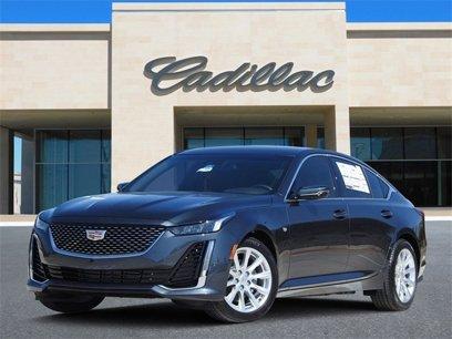 New 2020 Cadillac CT5 2.0T Luxury - 546551929