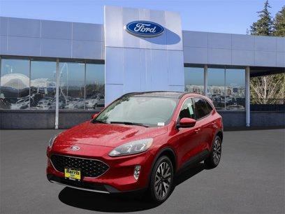 New 2020 Ford Escape AWD SEL - 527020590