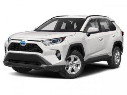New 2021 Toyota RAV4 XLE - 569848705