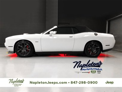 New 2019 Dodge Challenger R/T - 512055469