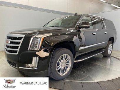 New 2020 Cadillac Escalade ESV 2WD - 539297834
