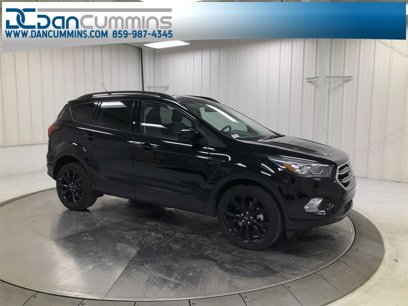 Used 2019 Ford Escape 4WD SE - 541539199