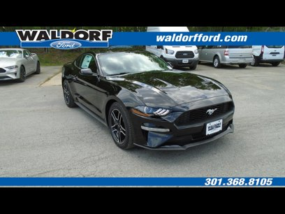 New 2019 Ford Mustang Coupe - 513961173