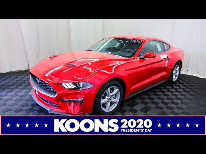 New 2019 Ford Mustang Coupe - 524952378