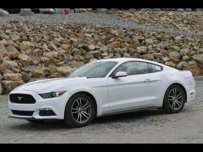 Used 2017 Ford Mustang Coupe - 537521454