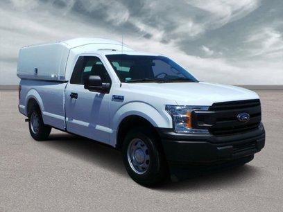 New 2019 Ford F150 XL - 511155757