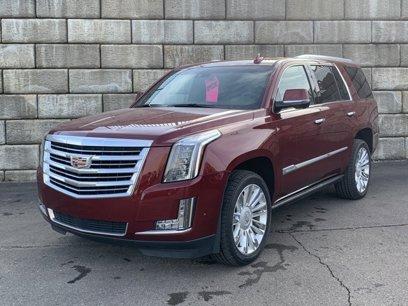 New 2019 Cadillac Escalade 4WD Platinum - 511648032