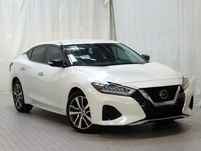 Certified 2019 Nissan Maxima 3.5 SV - 547925367