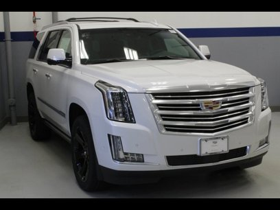 New 2019 Cadillac Escalade 4WD Platinum - 512141735