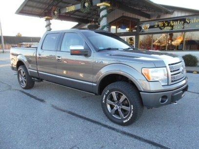 Used 2010 Ford F150 Platinum - 538072401