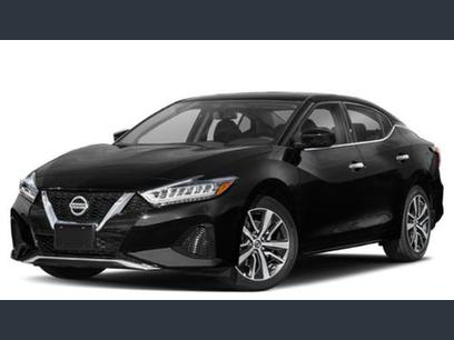 2020 Nissan Maxima For Sale Autotrader