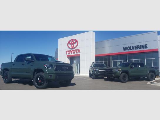 Wolverine Toyota