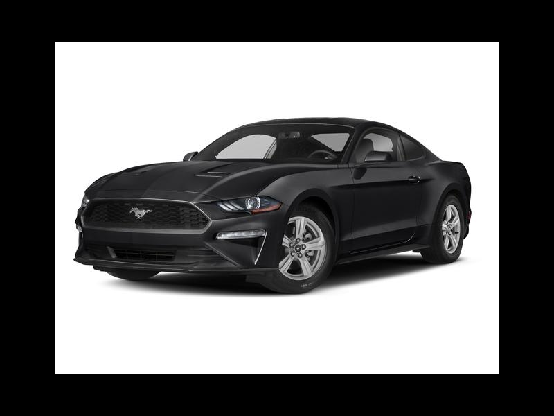 New 2019 Ford Mustang in South Burlington, VT - 495553639 - 1