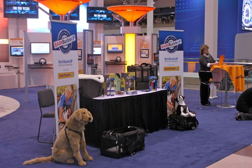 Bark Buckle UP Announces TOP DOG - New York Auto Show featured image large thumb0