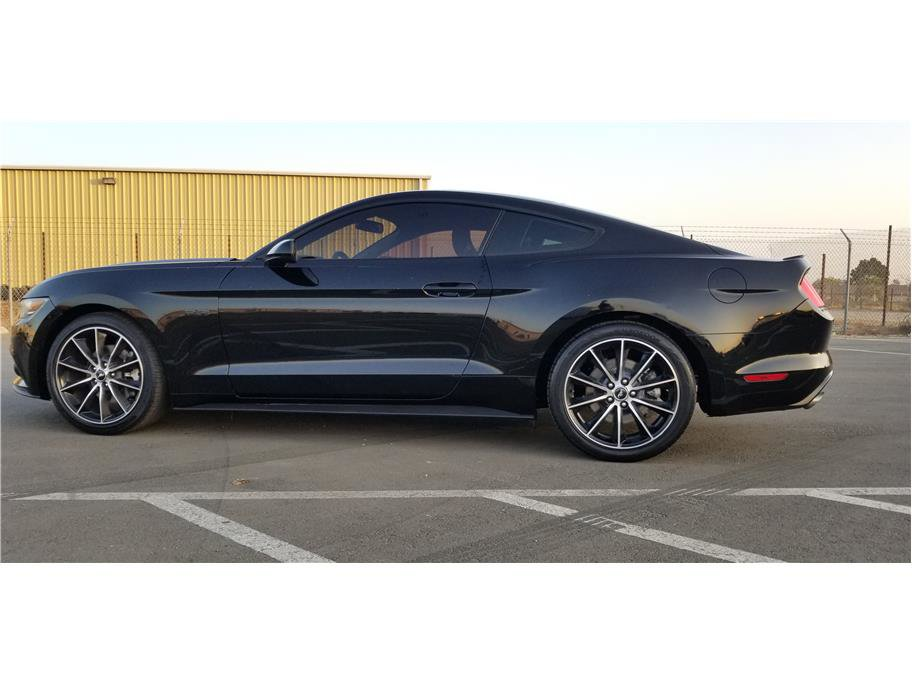 2015 Ford Mustang Coupe image
