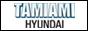 Tamiami Hyundai in Naples, FL 34109
