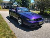 Used 2004 Ford Mustang Cobra