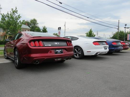 Car Dealerships In Winchester Va >> Malloy Ford : Winchester, VA 22601 Car Dealership, and ...