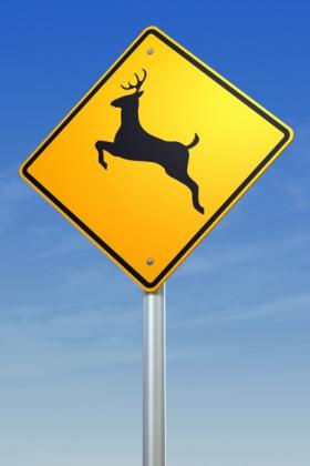 Deer Collisions on the Rise - State Farm Provides Avoidance Tips featured image large thumb0