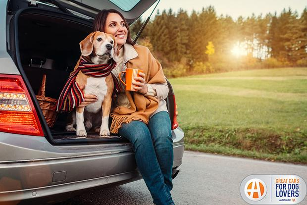 Got Dogs, Will Travel: Tips for Awesome Road Trips With Your Pup featured image large thumb0